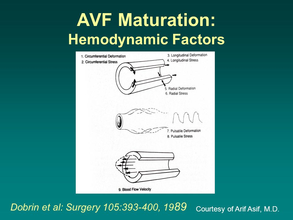 AVF Maturation: Hemodynamic Factors