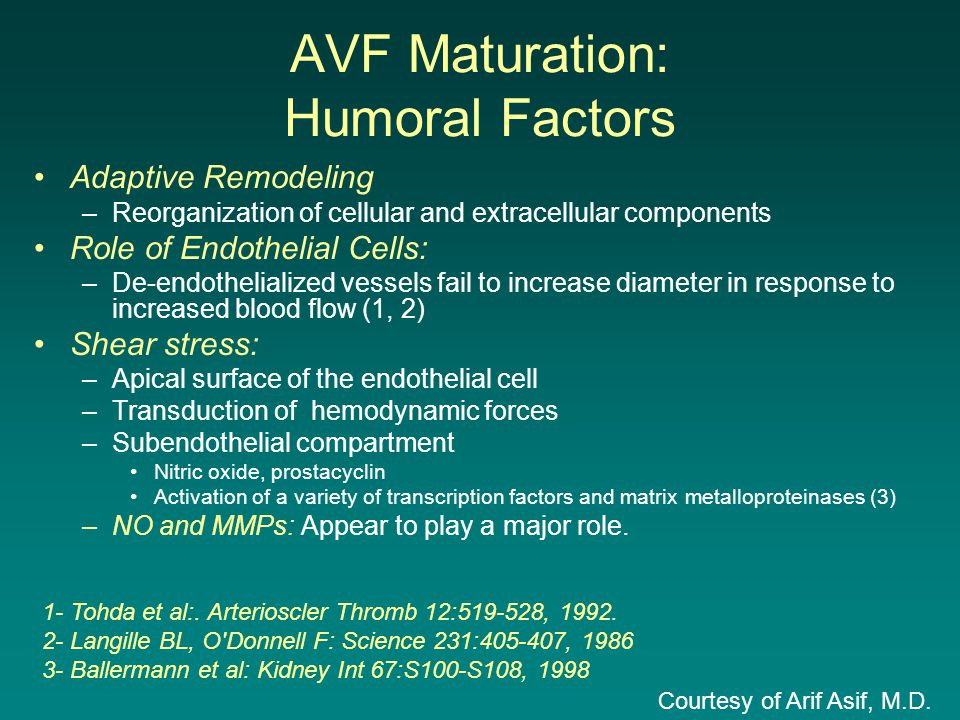 AVF Maturation: Humoral Factors