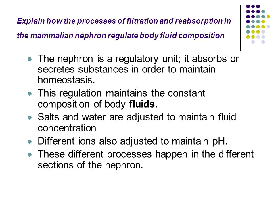 This regulation maintains the constant composition of body fluids.