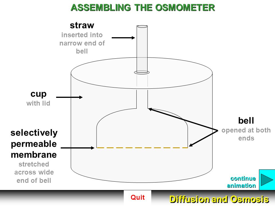 ASSEMBLING THE OSMOMETER