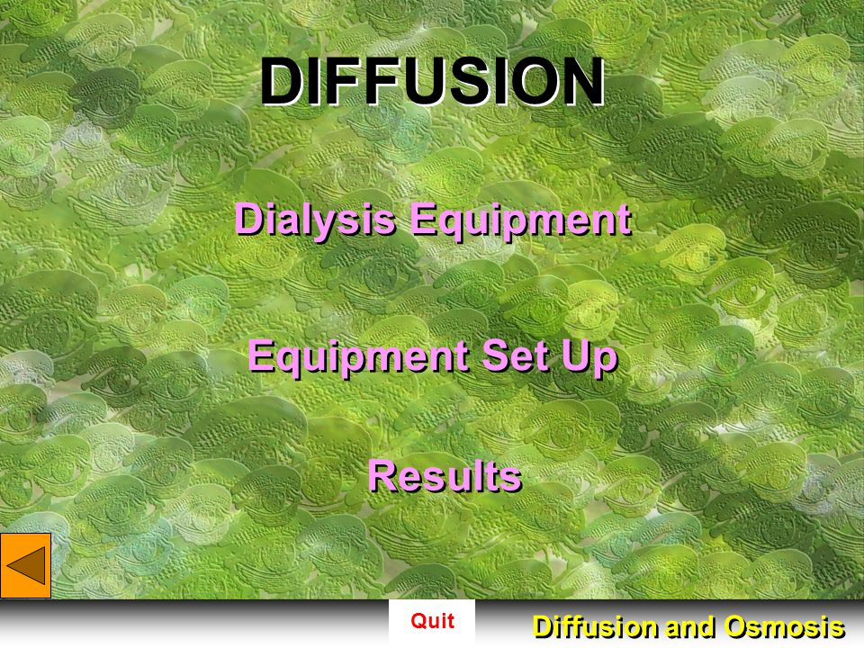 DIFFUSION Dialysis Equipment Equipment Set Up Results