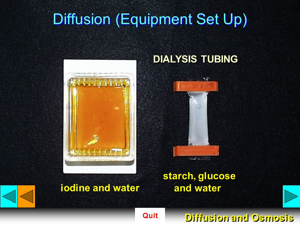 Diffusion (Equipment Set Up)