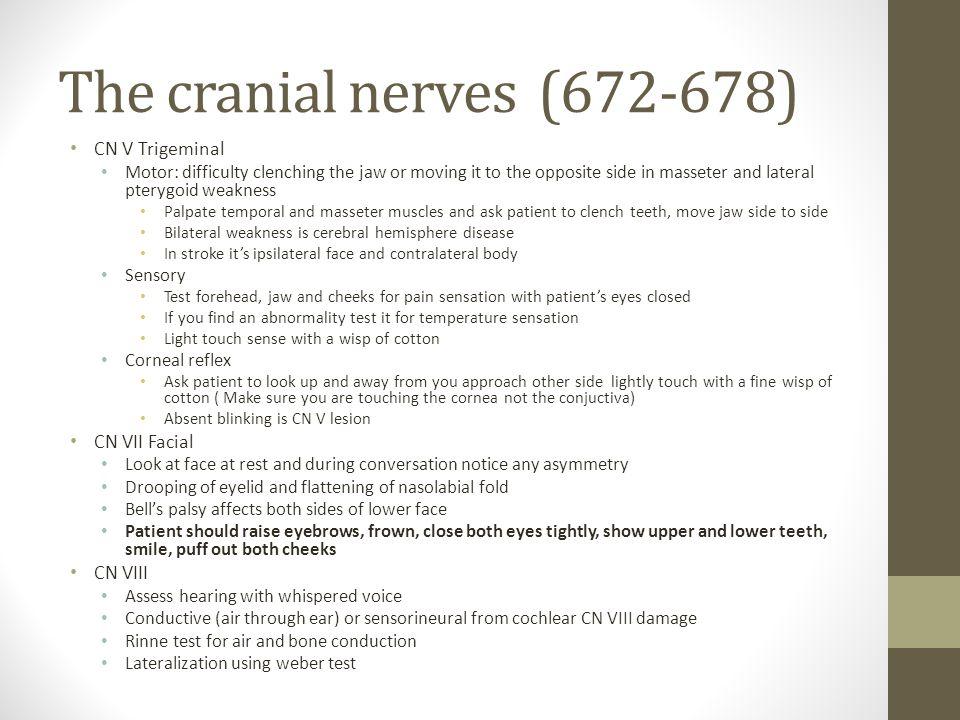 The cranial nerves (672-678) CN V Trigeminal CN VII Facial CN VIII