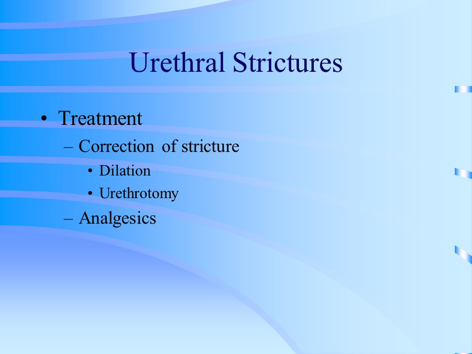 Urethral Strictures Treatment Correction of stricture Analgesics