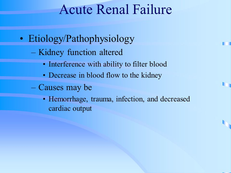 Acute Renal Failure Etiology/Pathophysiology Kidney function altered
