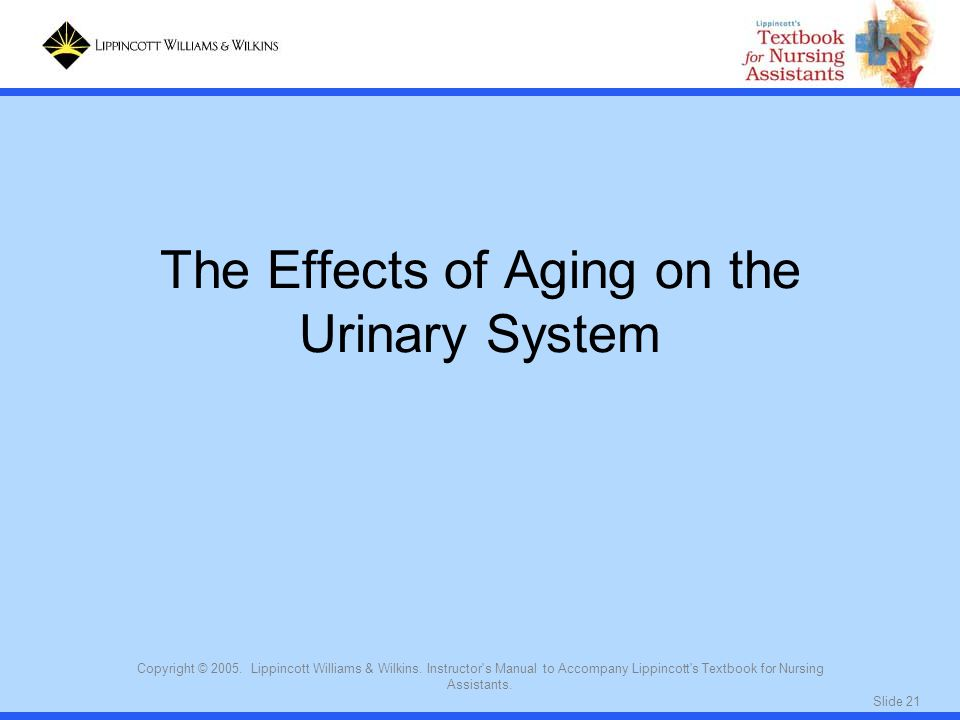 The Effects of Aging on the Urinary System