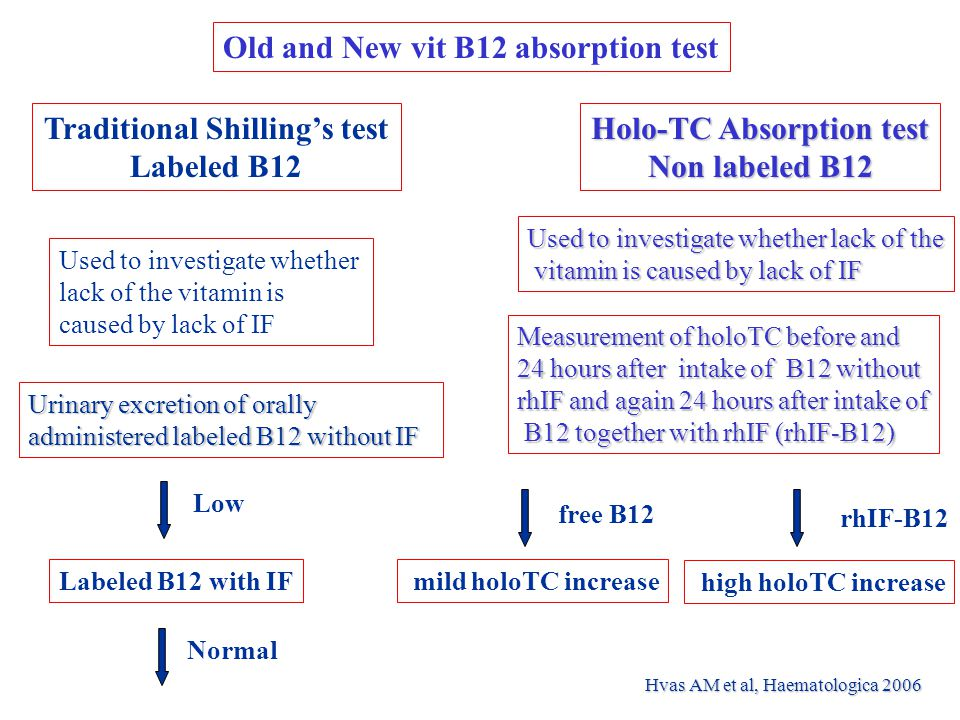 Traditional Shilling's test Holo-TC Absorption test