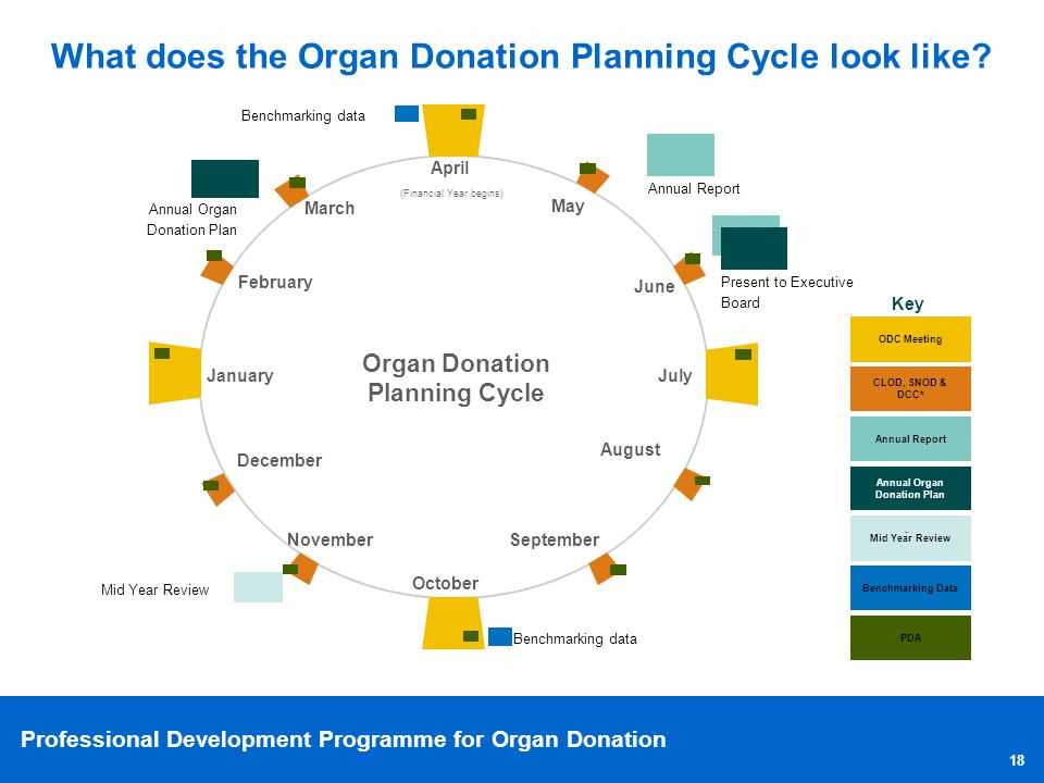 organ donation operations improvement plan essay Organ donation operations improvement plan 2327 words - 9 pages project plan to increase organ donation rates at temple university hospital introduction over 88,400 americans are currently awaiting a life saving organ transplant.