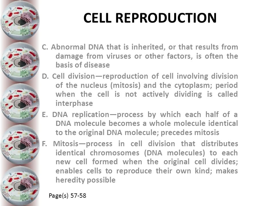 CELL REPRODUCTION C. Abnormal DNA that is inherited, or that results from damage from viruses or other factors, is often the basis of disease.