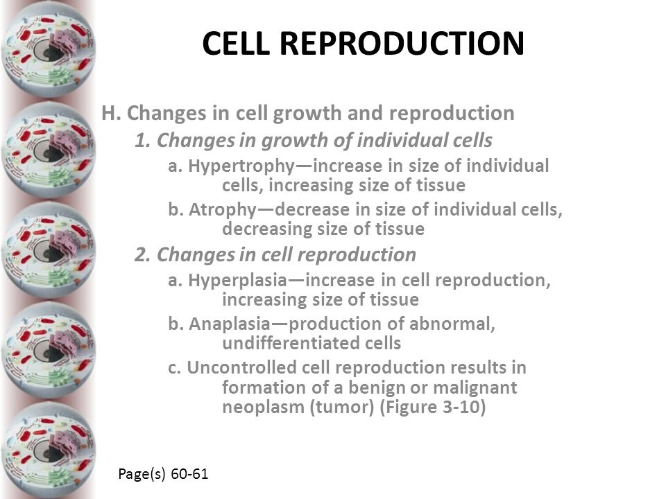 CELL REPRODUCTION H. Changes in cell growth and reproduction