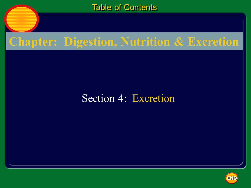Chapter: Digestion, Nutrition & Excretion