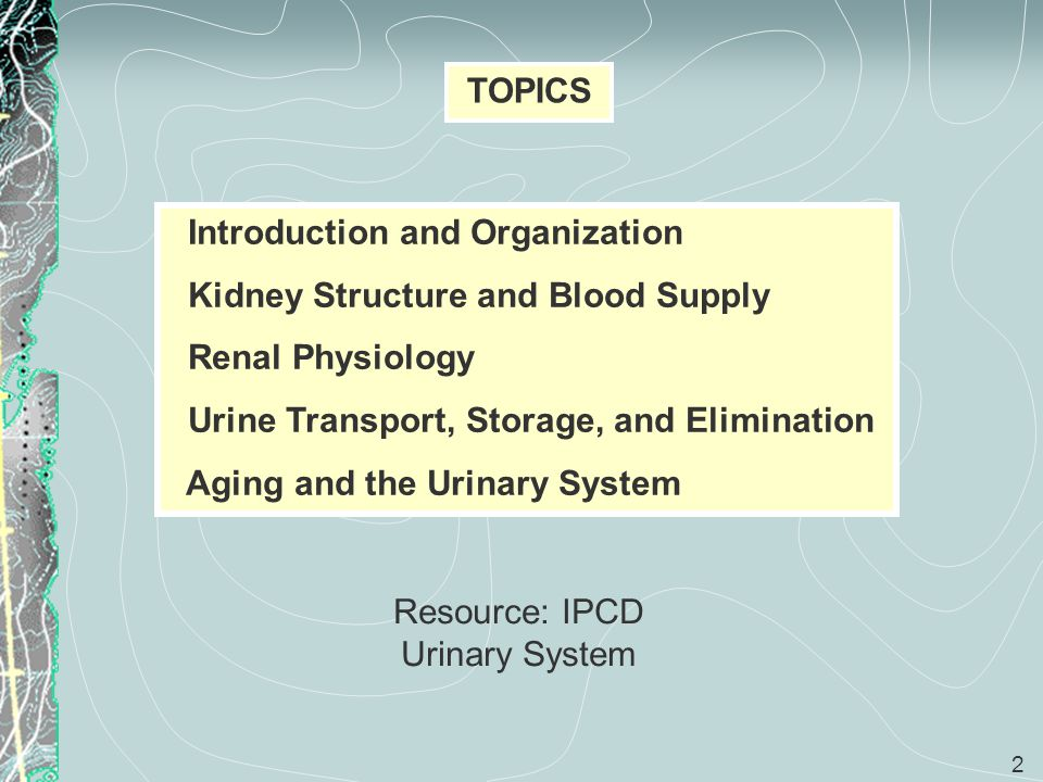 Resource: IPCD Urinary System