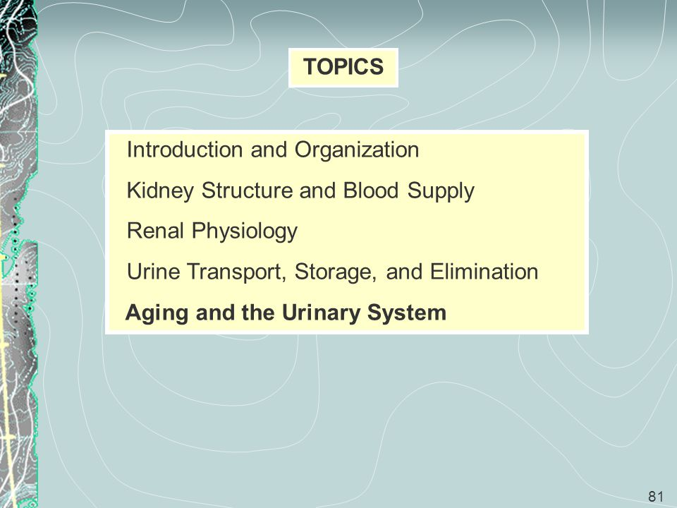 TOPICS Introduction and Organization. Kidney Structure and Blood Supply. Renal Physiology. Urine Transport, Storage, and Elimination.