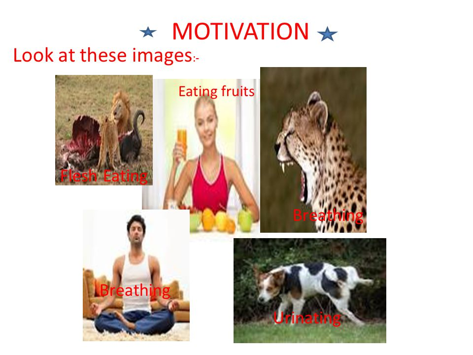 MOTIVATION Look at these images:- Flesh Eating Breathing Breathing