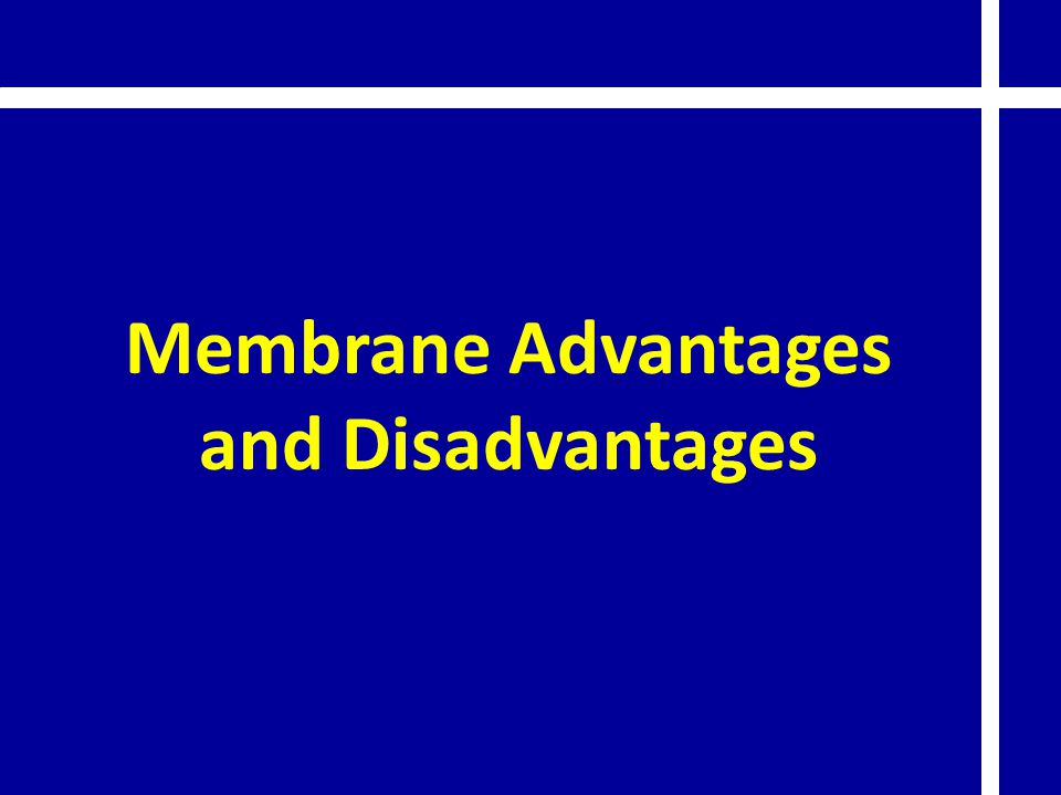 Membrane Advantages and Disadvantages