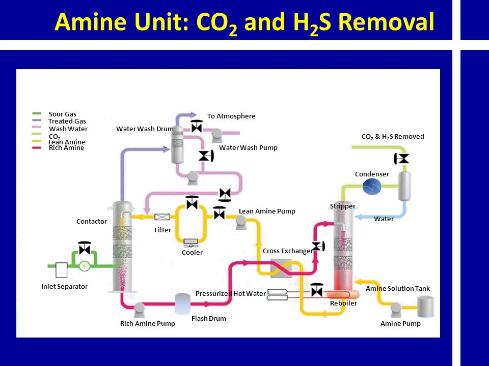 Amine Unit: CO2 and H2S Removal
