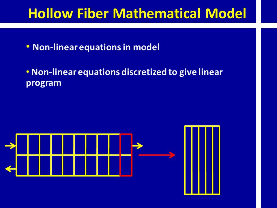 Hollow Fiber Mathematical Model