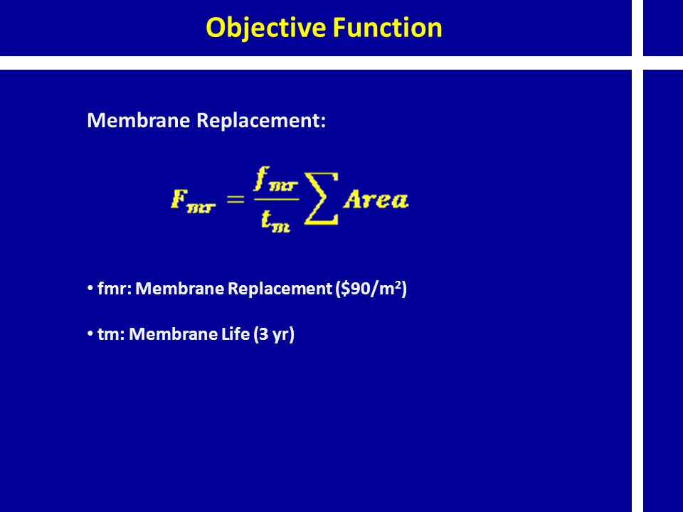 Objective Function Membrane Replacement: