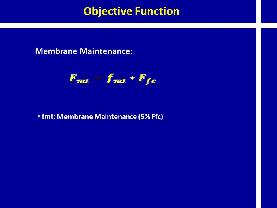 Objective Function Membrane Maintenance:
