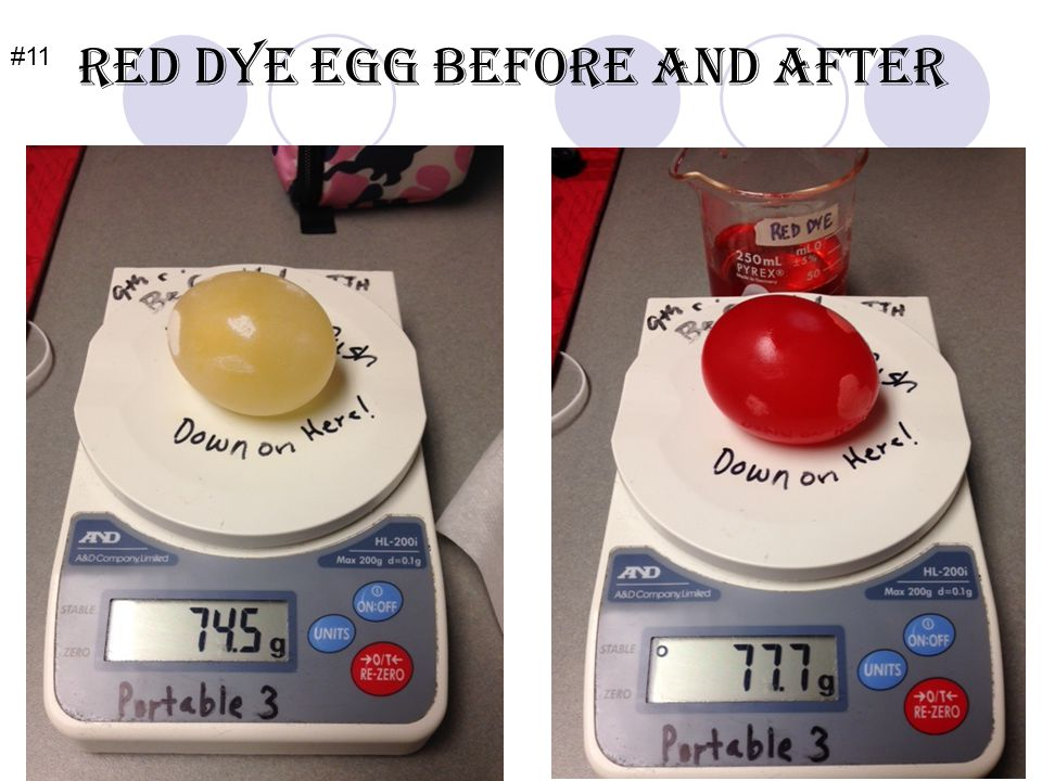 Red Dye Egg before and after