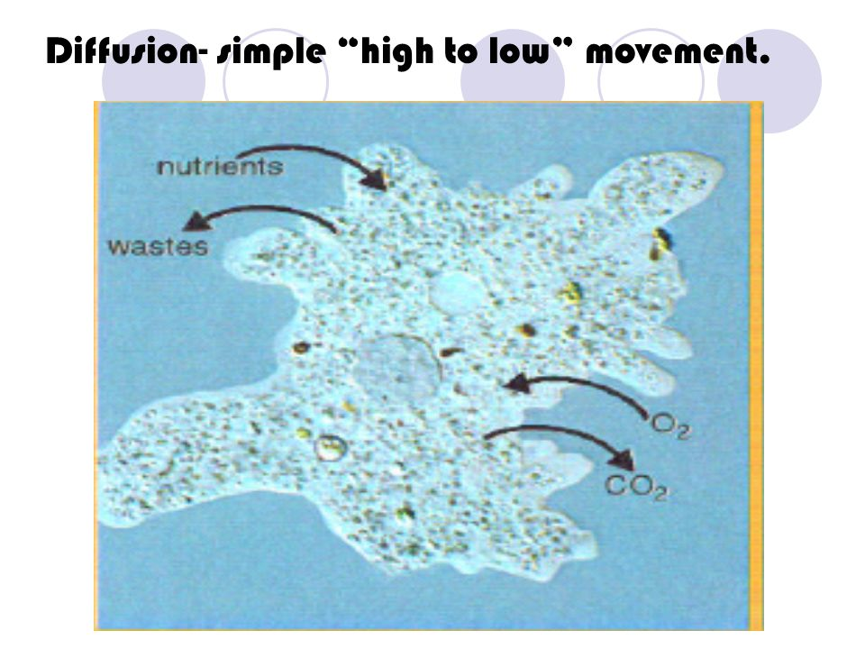 Diffusion- simple high to low movement.