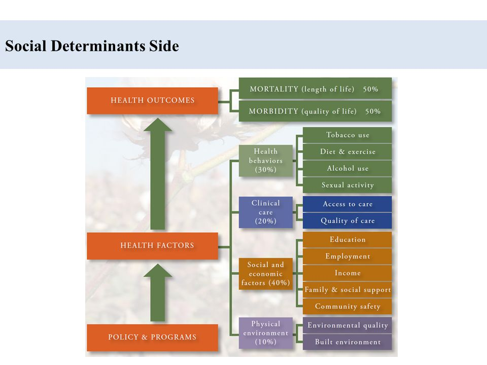 Social Determinants Side