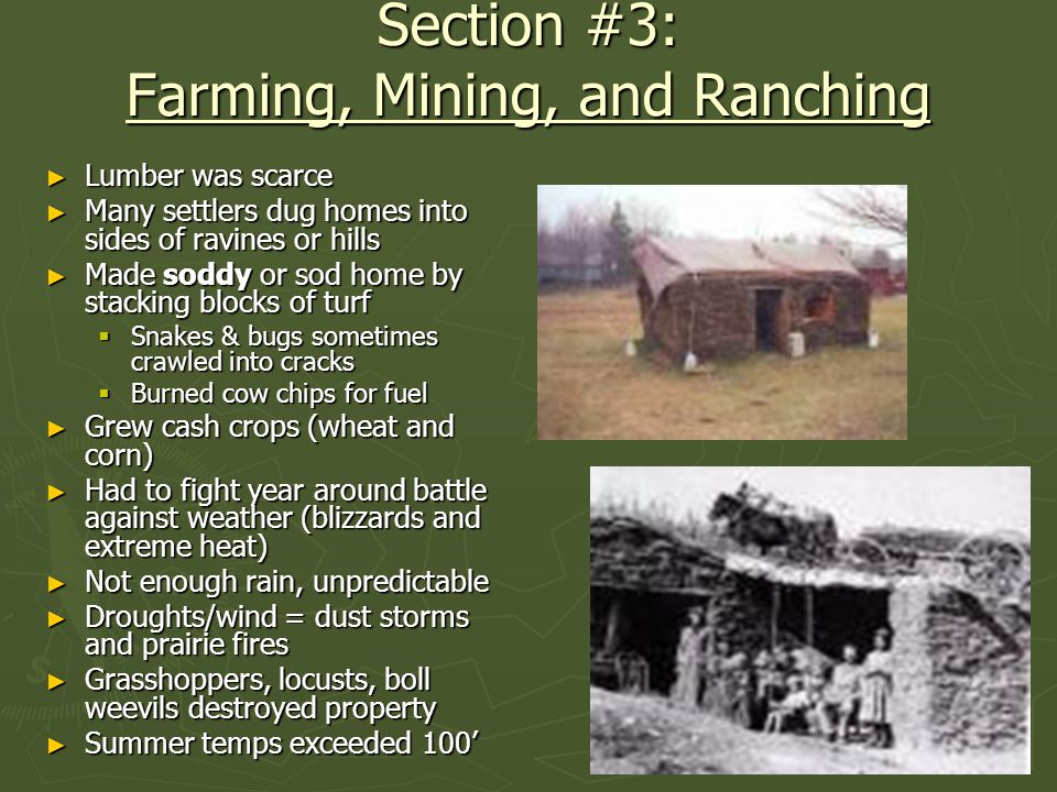 Section #3: Farming, Mining, and Ranching