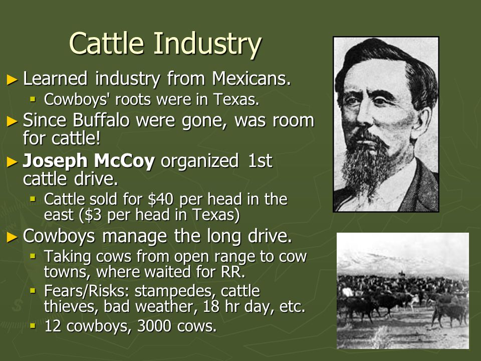 Cattle Industry Learned industry from Mexicans.