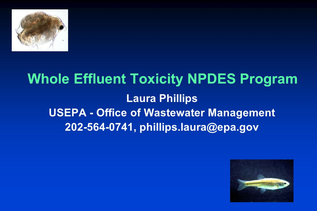 Whole Effluent Toxicity NPDES Program