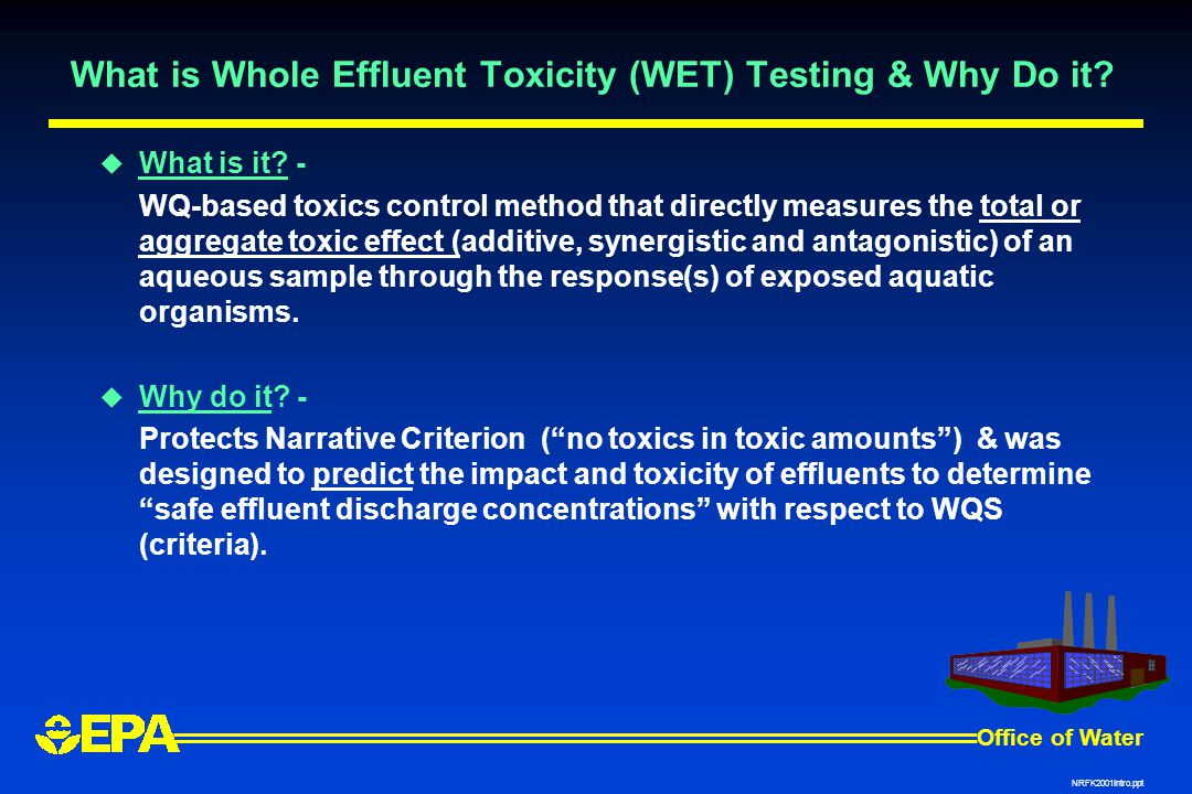 What is Whole Effluent Toxicity (WET) Testing & Why Do it