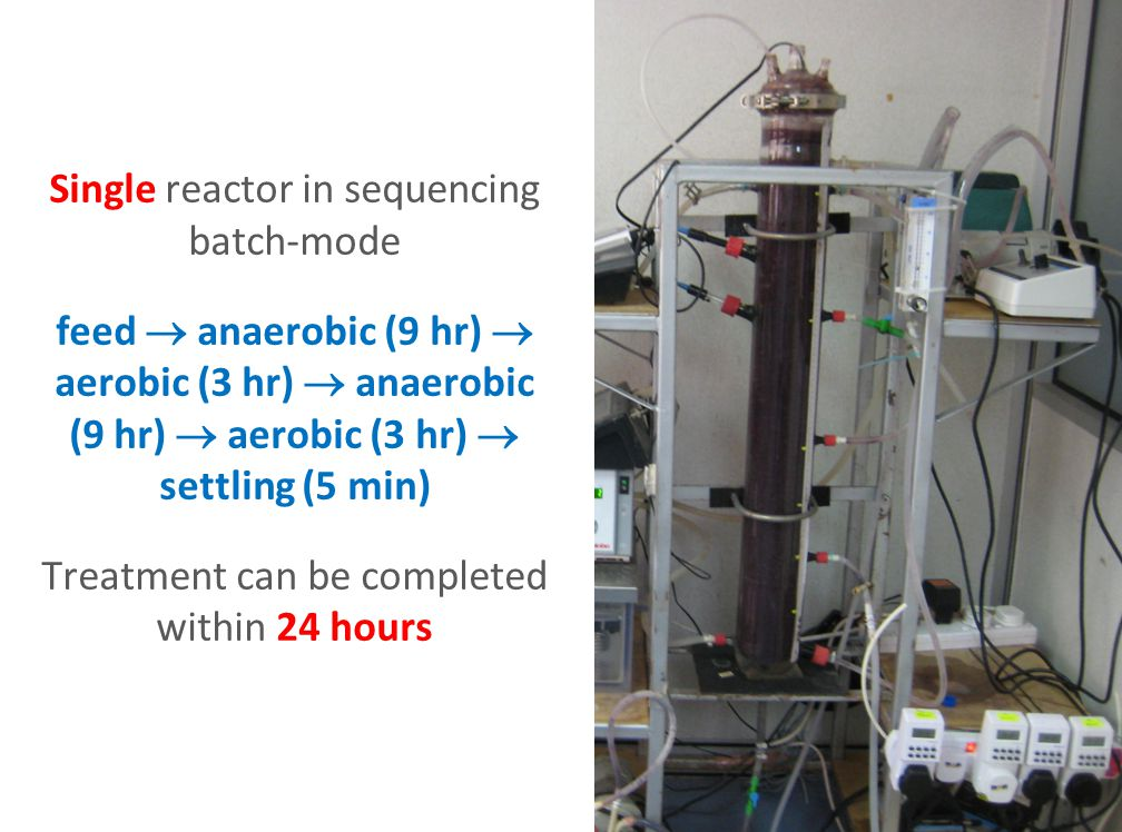 Single reactor in sequencing batch-mode feed  anaerobic (9 hr)  aerobic (3 hr)  anaerobic (9 hr)  aerobic (3 hr)  settling (5 min) Treatment can be completed within 24 hours