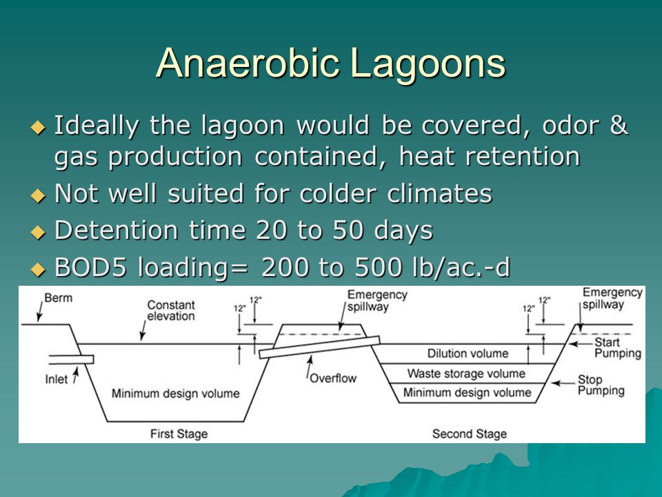 Anaerobic Lagoons Ideally the lagoon would be covered, odor & gas production contained, heat retention.