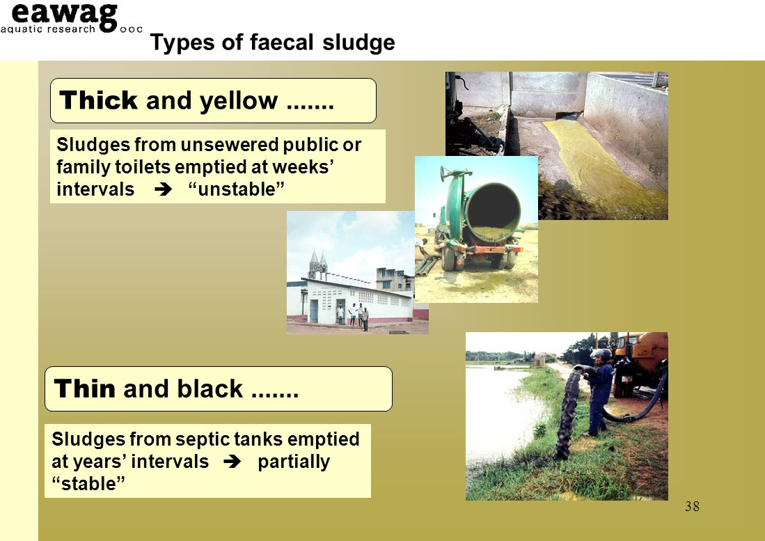 Faecal sludge – underestimated problem