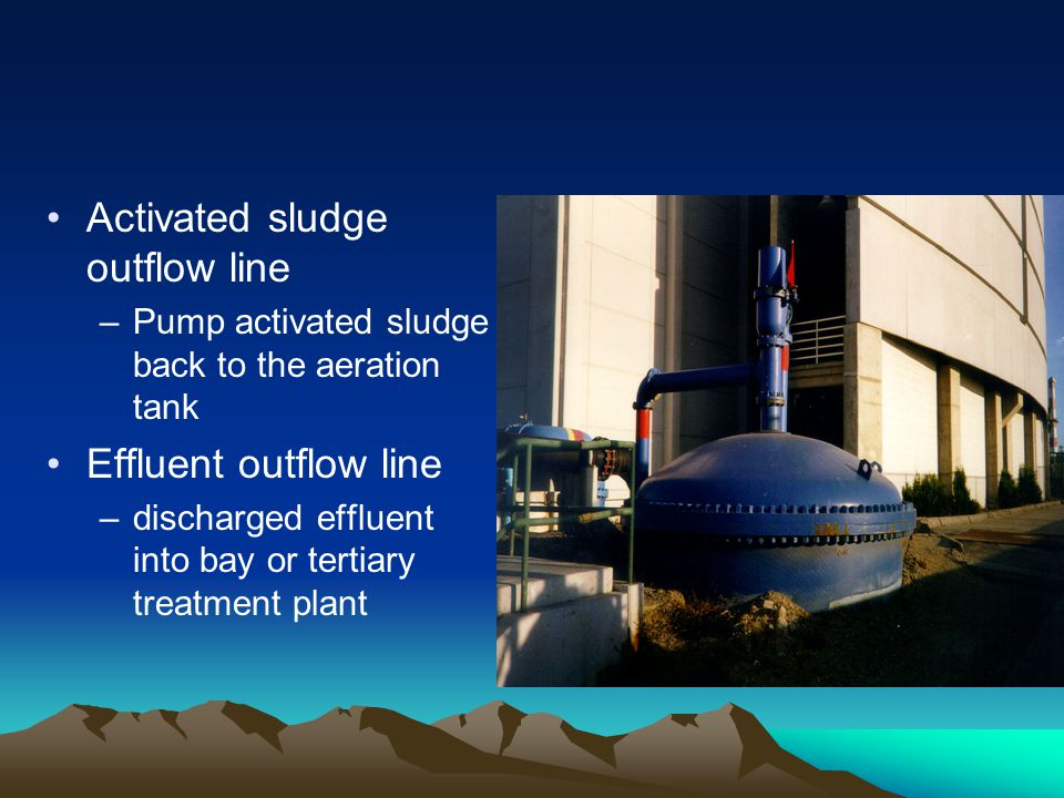 Activated sludge outflow line
