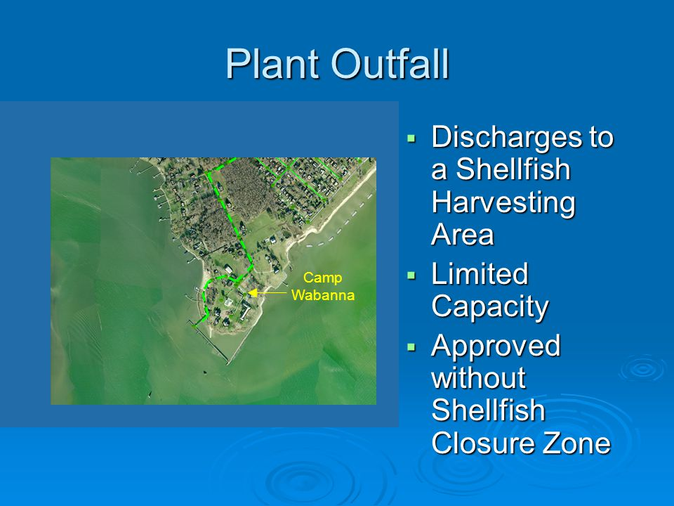 Plant Outfall Discharges to a Shellfish Harvesting Area
