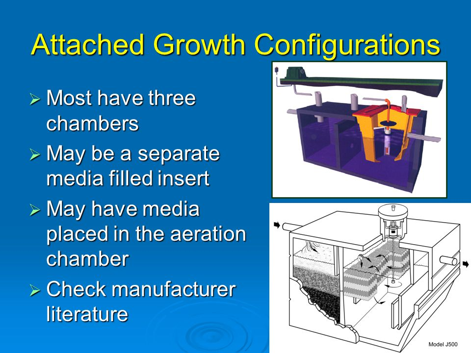 Attached Growth Configurations