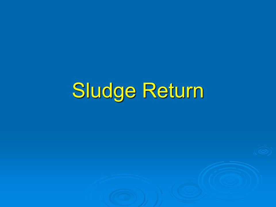 Sludge Return Sludge return is the process of settling out the biomass and returning it to the previous component.