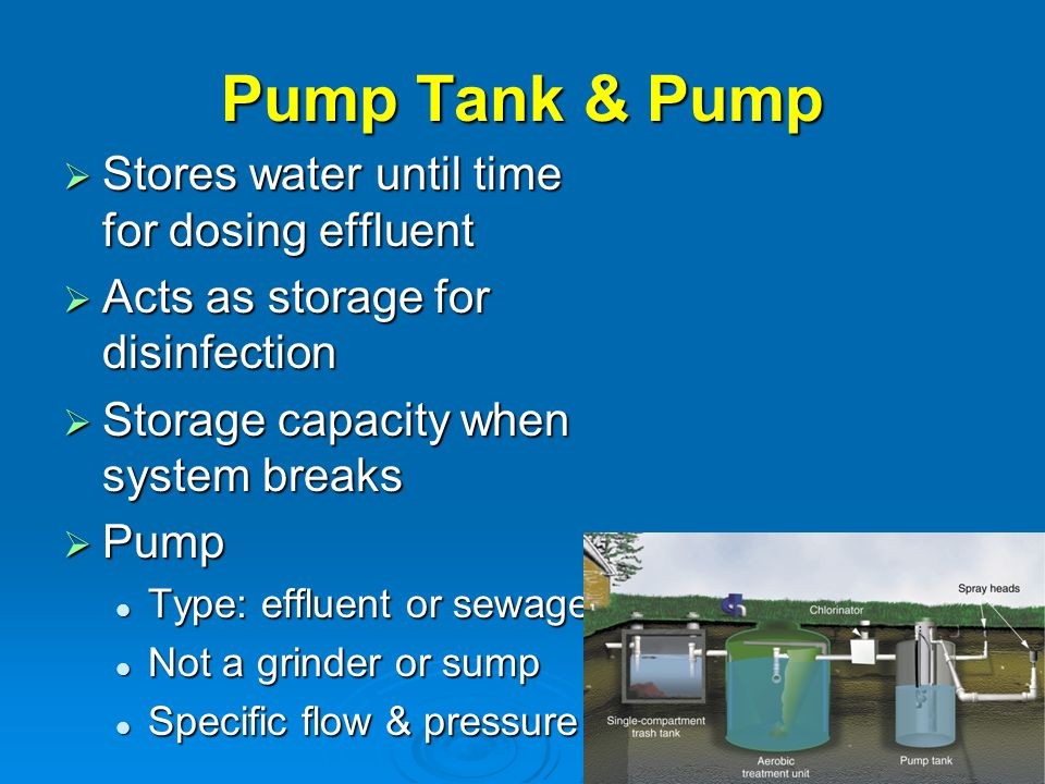 Pump Tank & Pump Stores water until time for dosing effluent