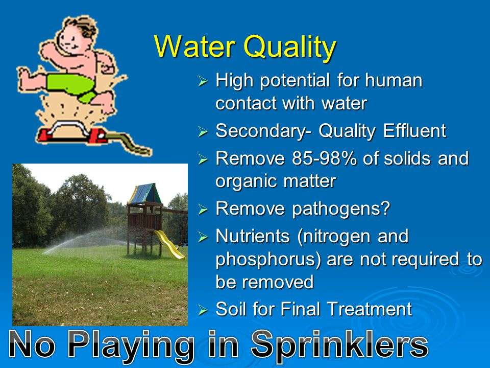 No Playing in Sprinklers