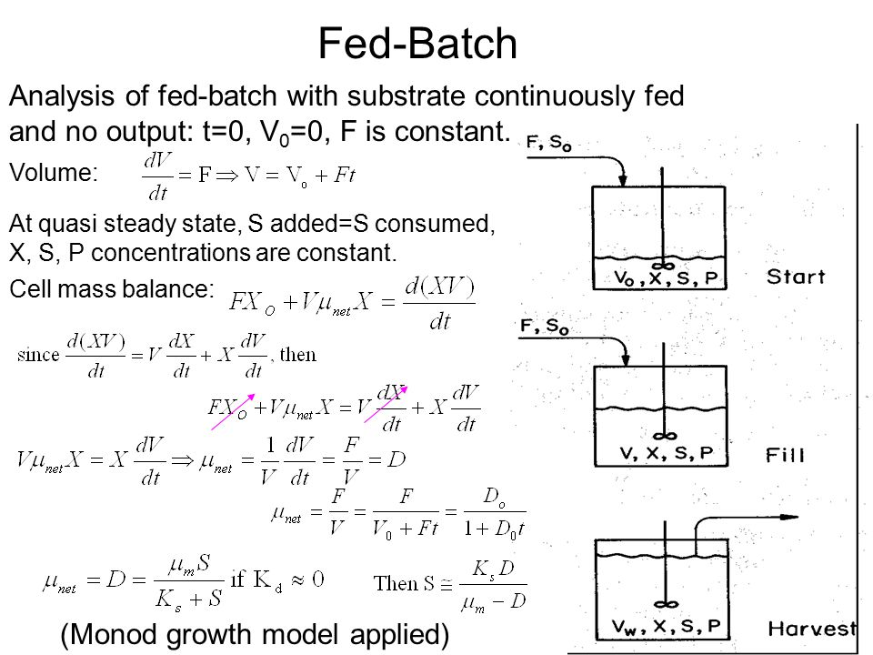 Fed-Batch Analysis of fed-batch with substrate continuously fed