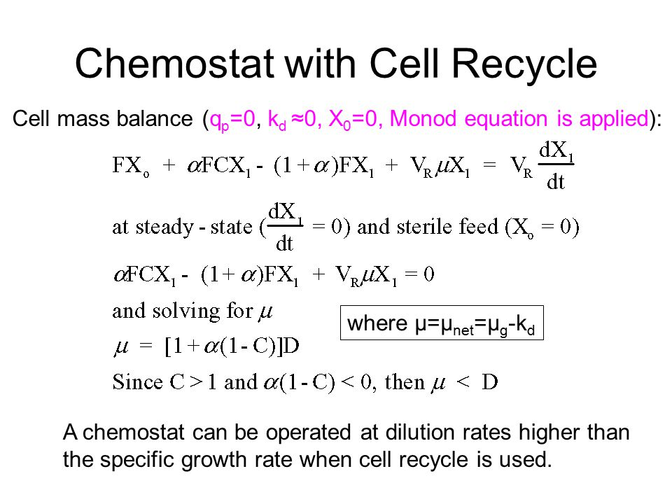 Chemostat with Cell Recycle