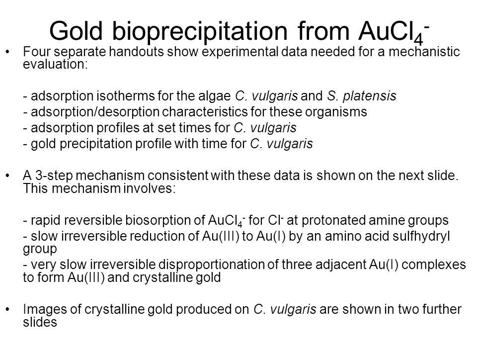 Gold bioprecipitation from AuCl4-