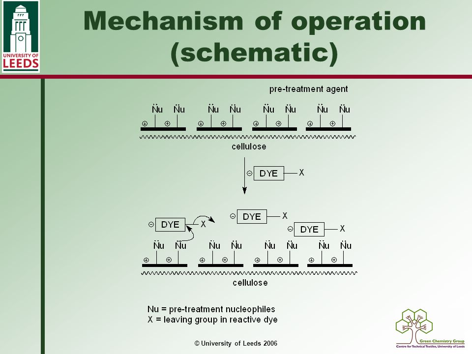 Mechanism of operation (schematic)