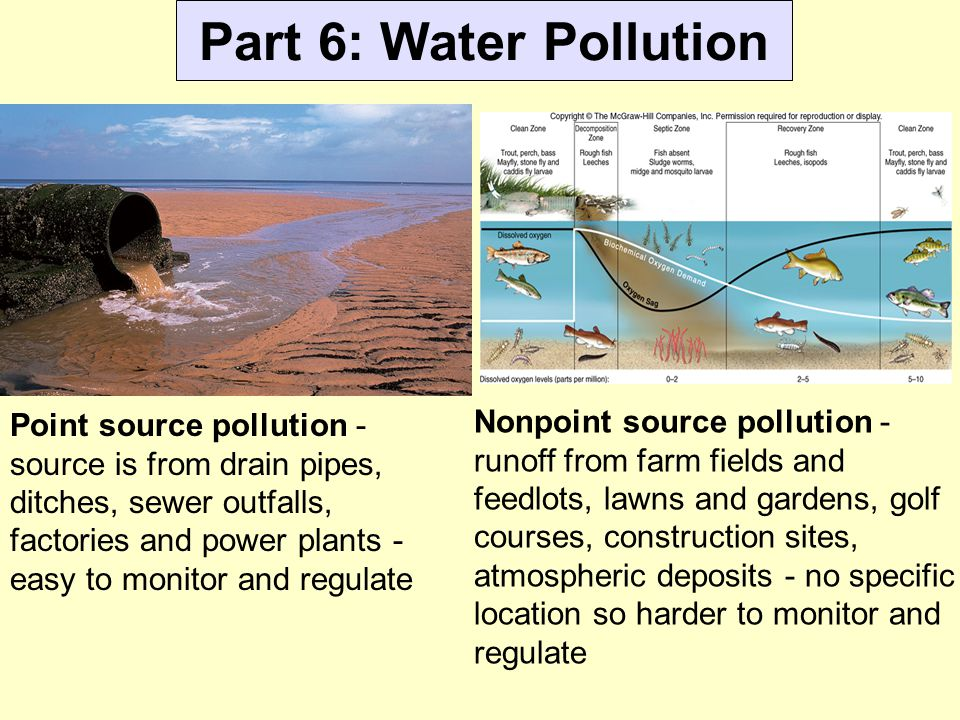 Part 6: Water Pollution