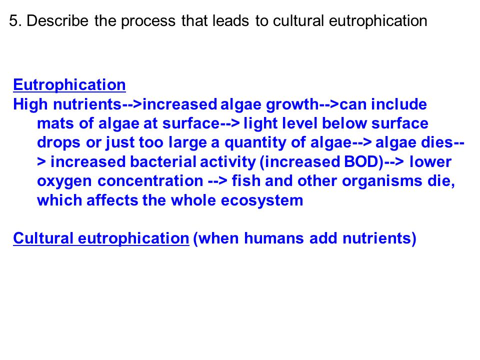 5. Describe the process that leads to cultural eutrophication