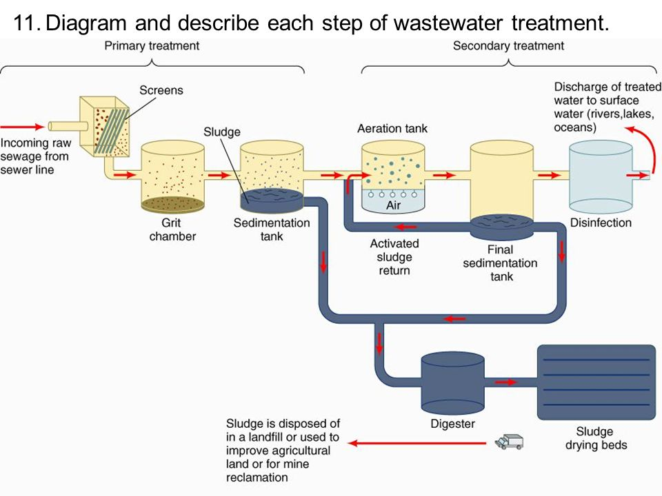11. Diagram and describe each step of wastewater treatment.
