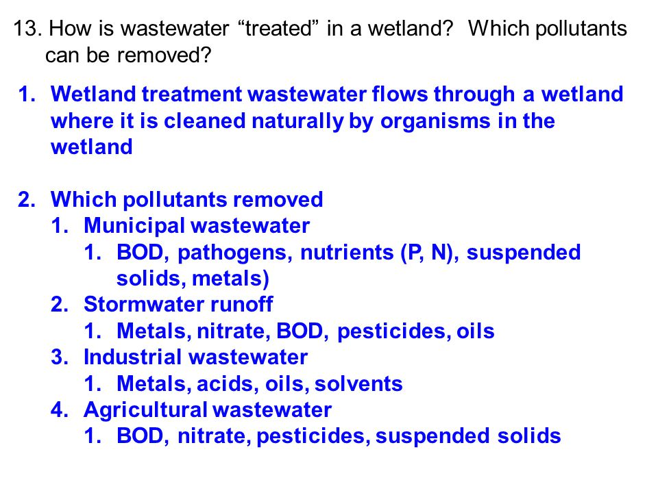 13. How is wastewater treated in a wetland