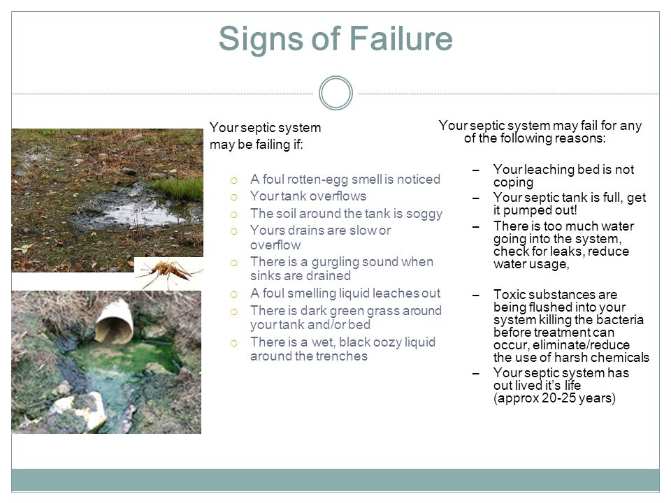 Signs of Failure Your septic system may be failing if: