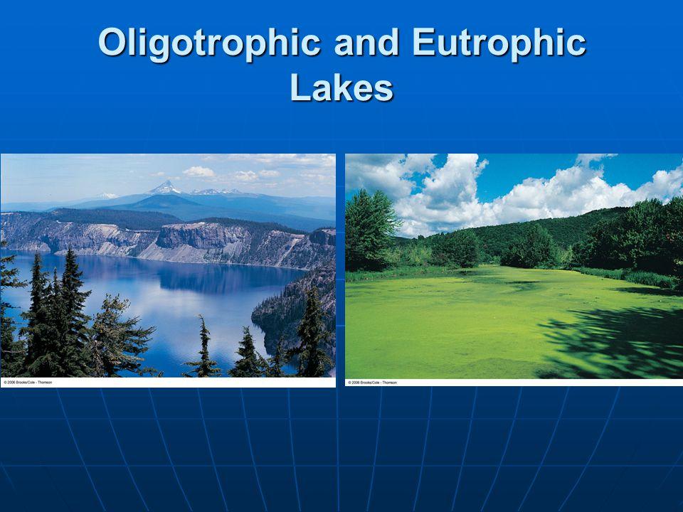 Oligotrophic and Eutrophic Lakes