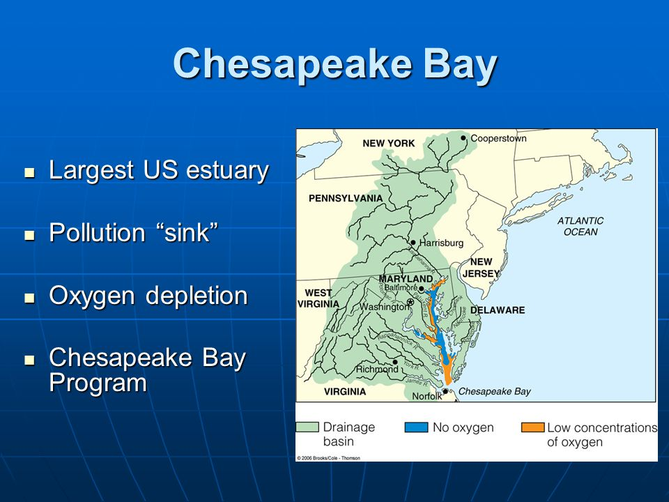 Chesapeake Bay Largest US estuary Pollution sink Oxygen depletion
